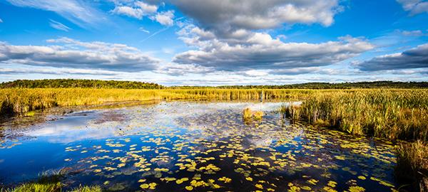 Beaver River – photo © 2014 by Martha Weber & Andris Piebalgs.